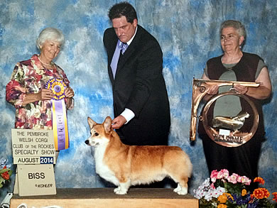 "Cefin's A Boy Named Sue, ""Cash,"" Best of Breed"